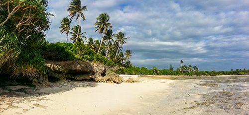 3. Zanzibar, playas del este - Paco Nadal