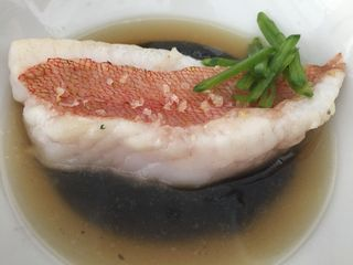 Gallineta sobre crema de chirivía y tinta de calamar con  un caldo de búsanos (cañaillas)
