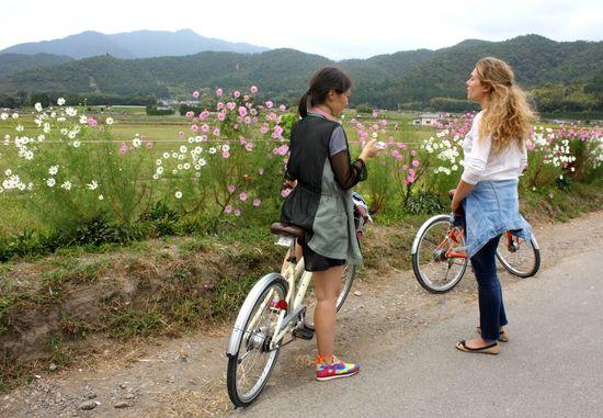 Camino de Arashiyama Isidoro Merino