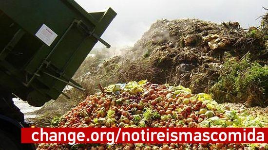 Campaña change.org contra el despilfarro de alimentos en comedores escolares