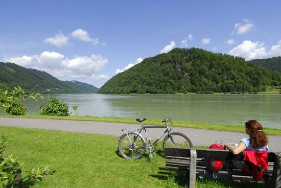 El Danubio entre Passau y Linz, en Austria. - Andreas Strauss