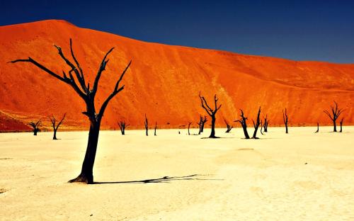 Dead-Vlei-Namibia_