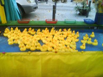 Al_agua_patos_2