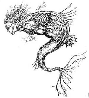 El hombre pez Lierganes_300_3